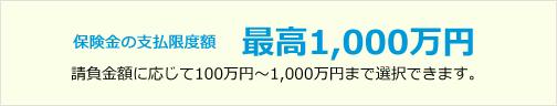 保険金の支払限度額 最高1,000万円